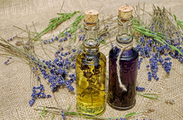 levanduľový olej výroba