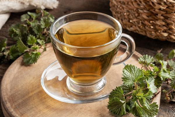 žihľavový čaj účinky
